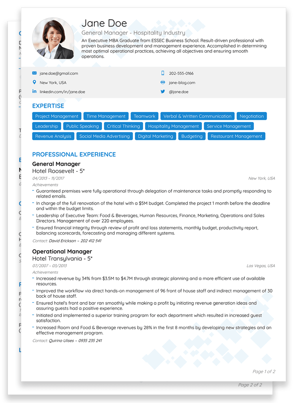 two pages executive resume template