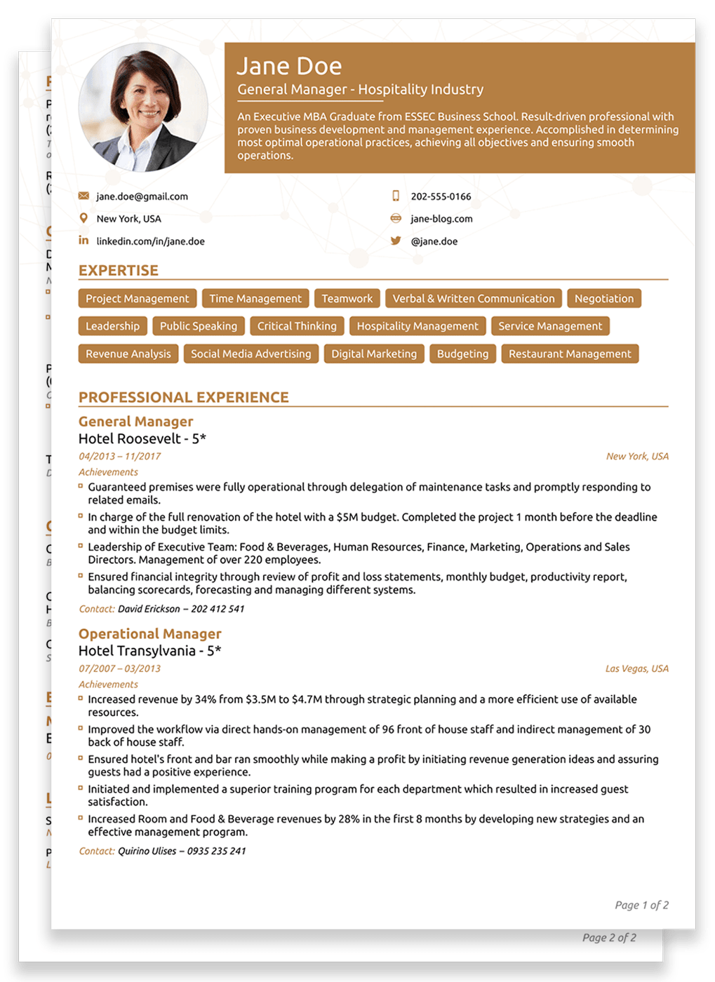 two pages functional resume