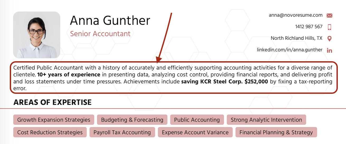 summary for accountant resume