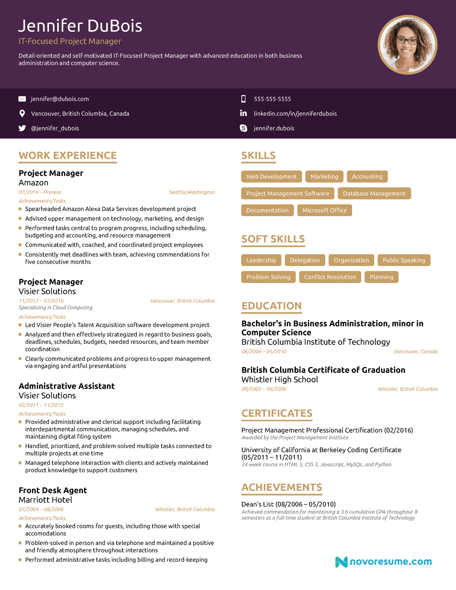 Project Manager Chronological Resume