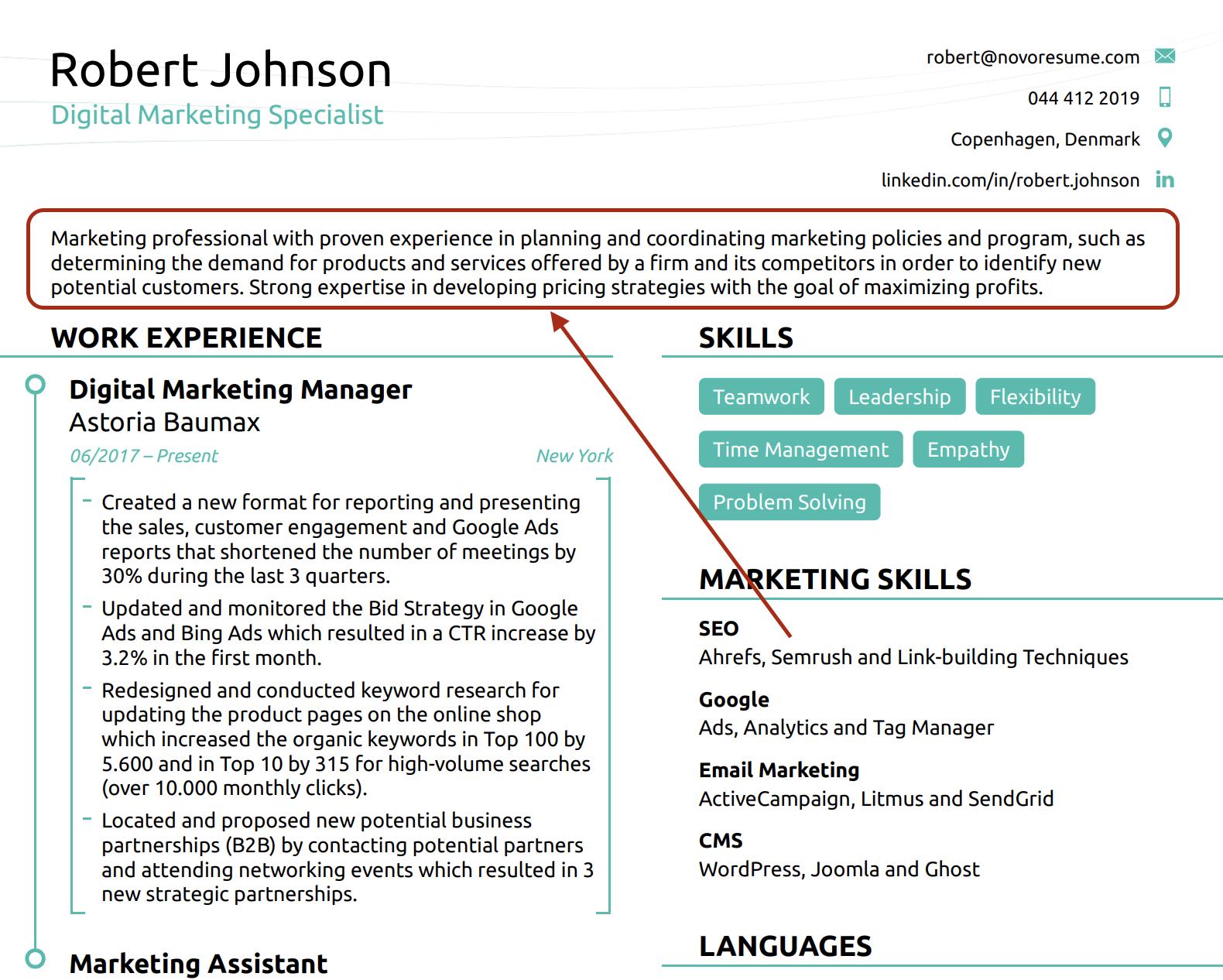 resume summary combination resume