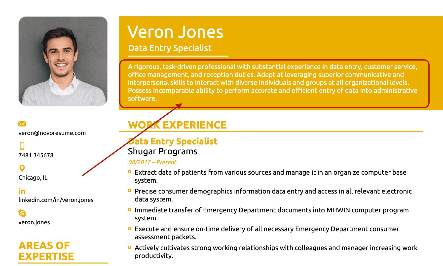 resume summary for data entry resume