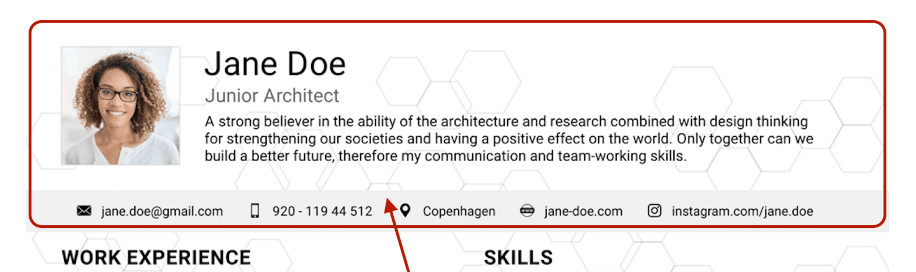 resume header example
