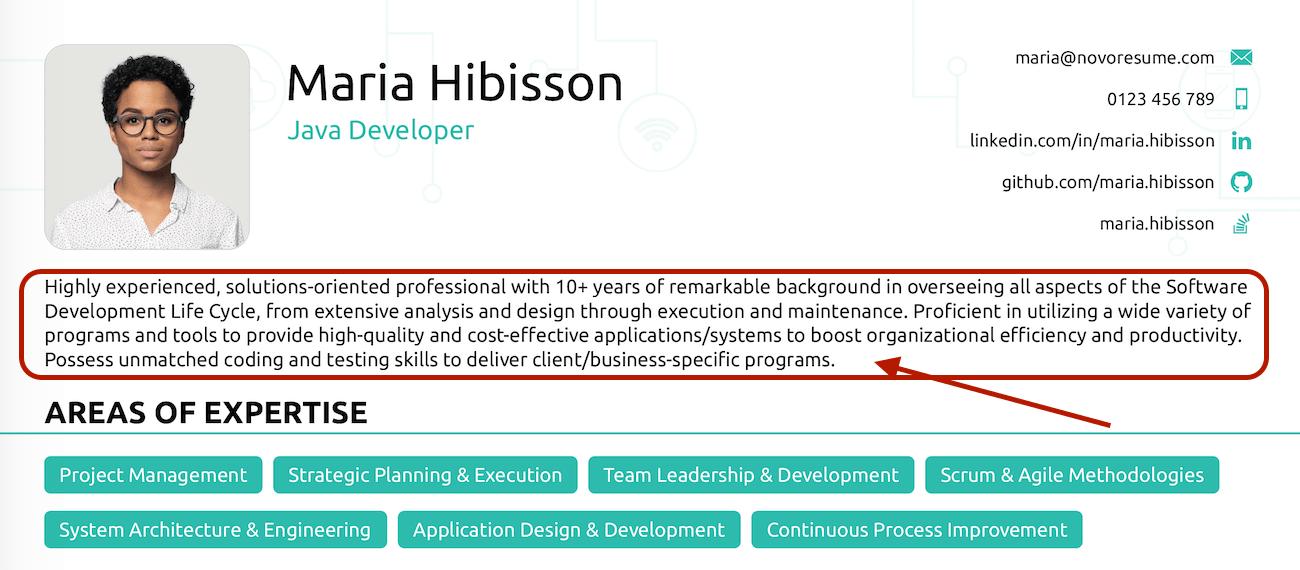 Java Developer Resume Summary