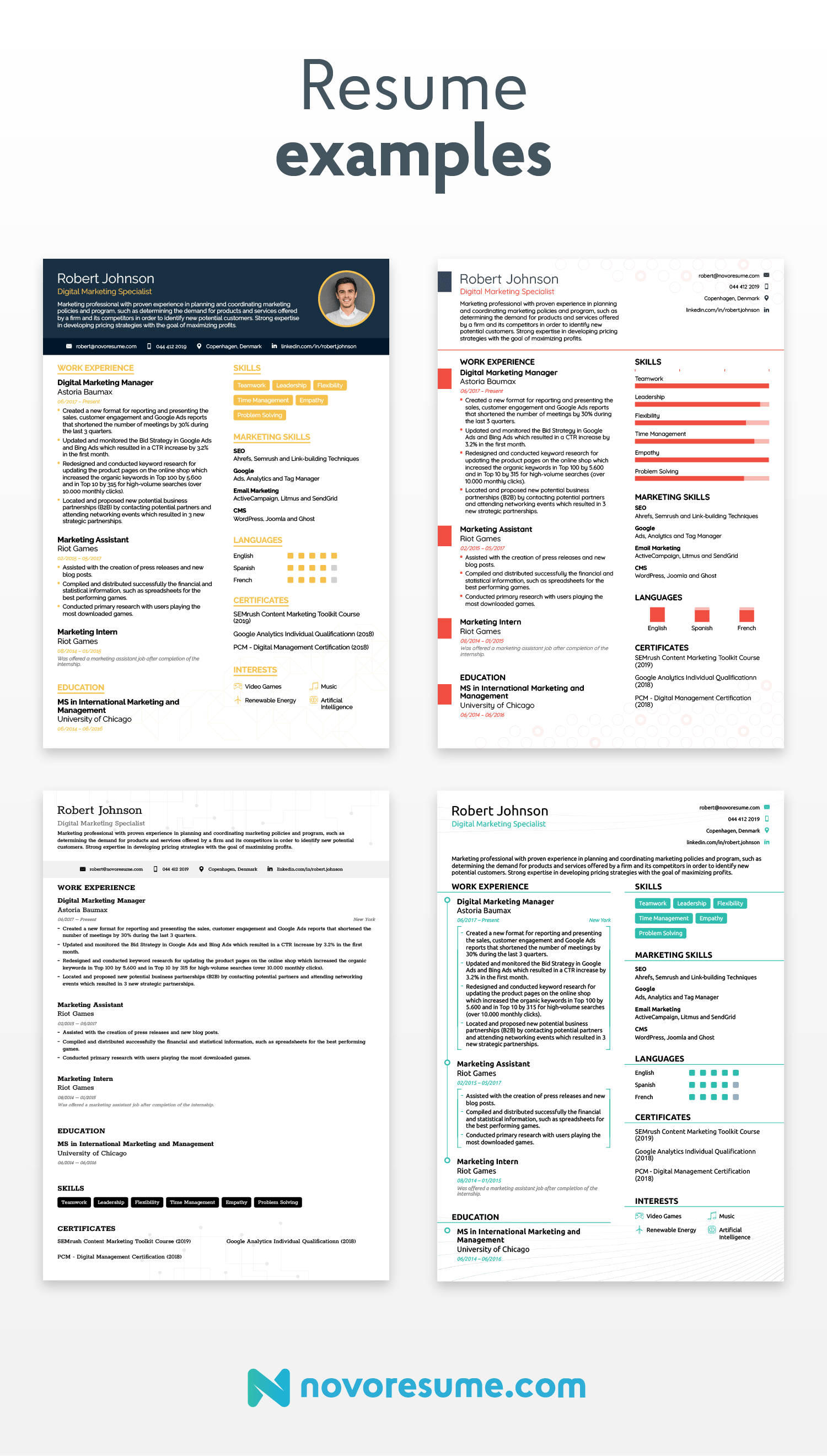 resume examples for job hunt