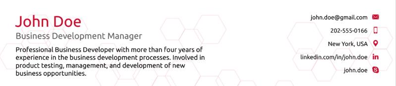 header for business development resume