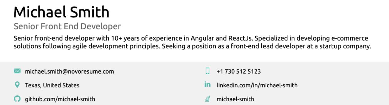 resume summary on layout
