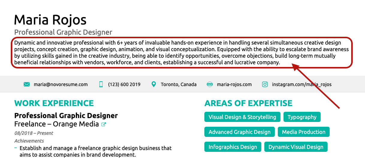 resume summary resume profile