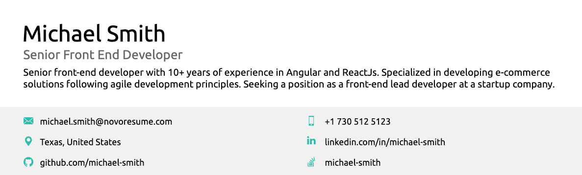 professional summary in resume header