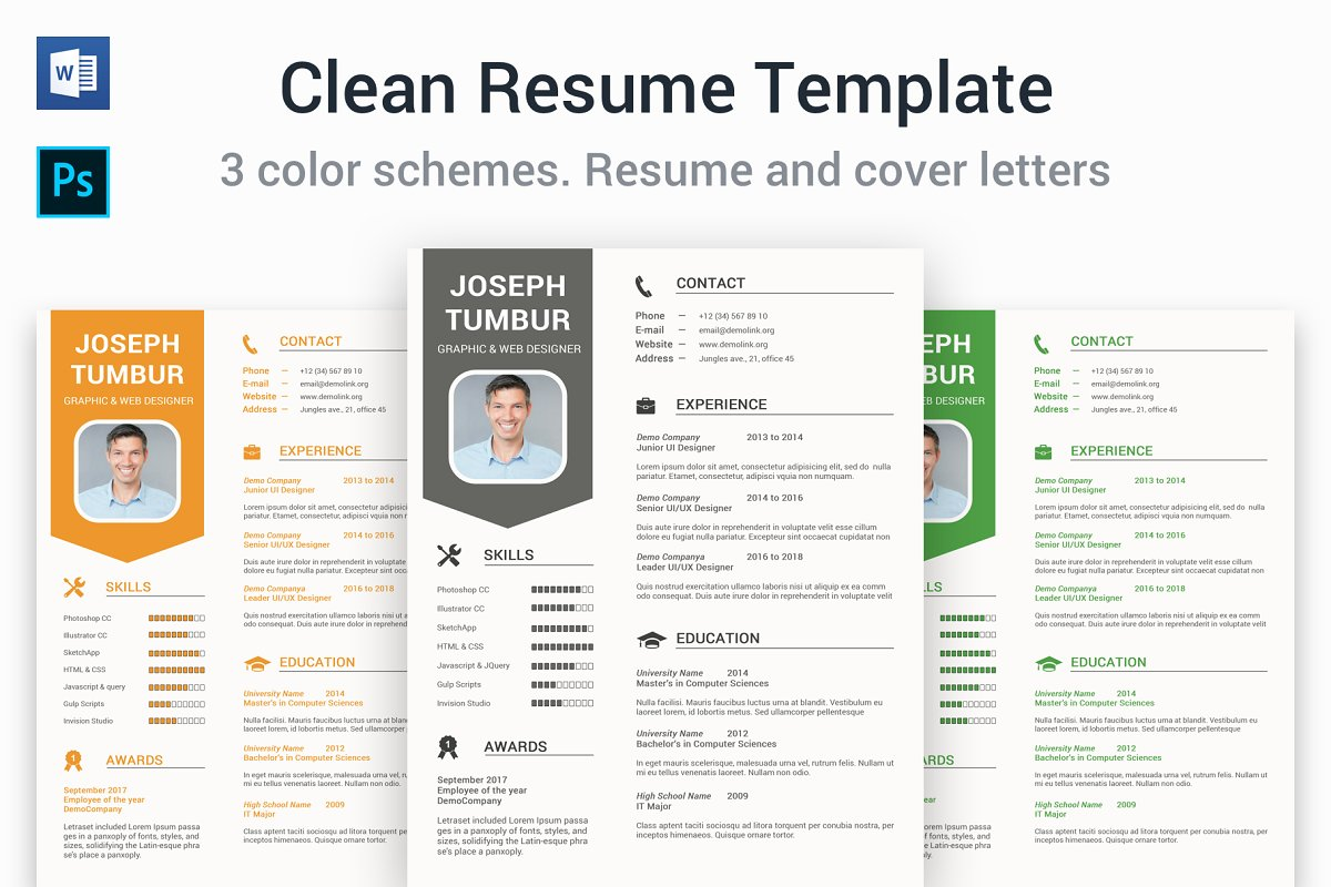 clean word resume templates